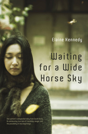 wide_horse_sky_1500_wide