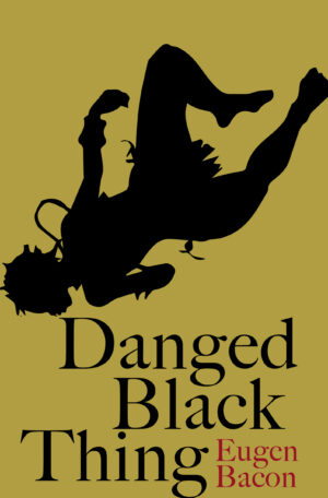 Danged Black Thing_cover for publicity